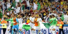 Afrique / Algérie : Vahid Halilodzic quitte officiellement les Fennecs