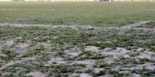 Coupe 32èmes – MHSC / PSG : Une pelouse qui inquiète